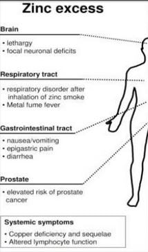 Zinc Toxicity